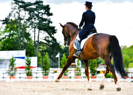 dressage horse and woman rider on dressage competition Stock Photo