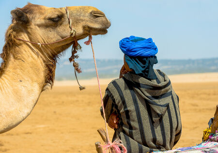 A camel is quetly waiting and looking at its owner, while the man, lleaning back is adiring the seascape photo