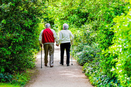 A picture of an old couple strollingin the park