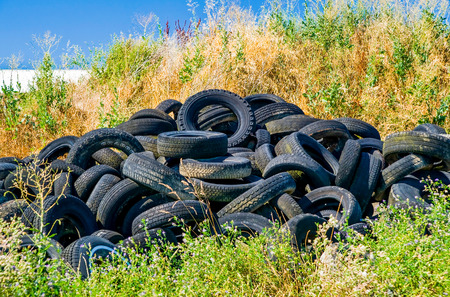 Old tyres polluting the nature photo