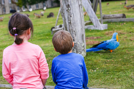 Two kids looking at the park playground with colorful bird and animal statues photo