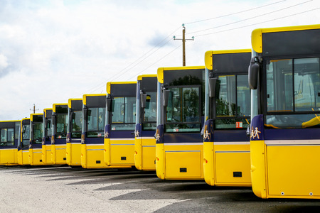 Big yellow buses parked in a line with white background and shadows on the ground Stock Photo