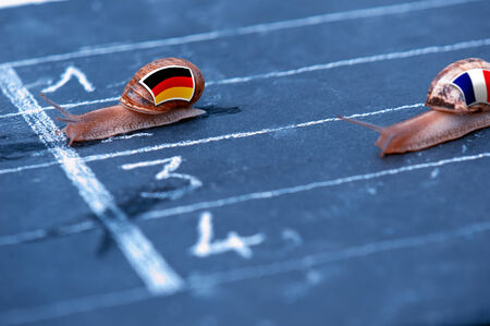 protectionism: snails race metaphor about Germany against France Stock Photo