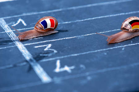 protectionism: snails race metaphor about France against Germany