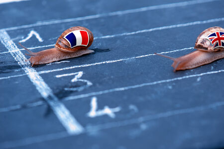 protectionism: snails race metaphor about France against England Stock Photo