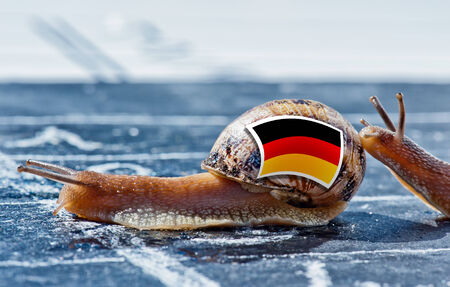 protectionism: snail with the colors of Germany flag encouraged by another country Stock Photo