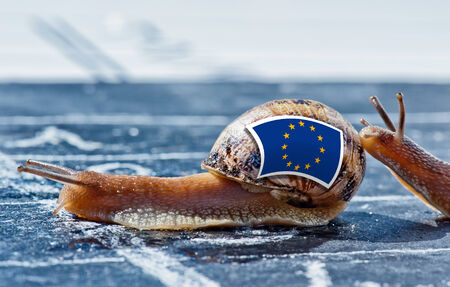 mutual aid: snail with the colors of Europe flag encouraged by another country