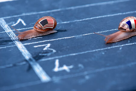 protectionism: snails race metaphor about Usa against France