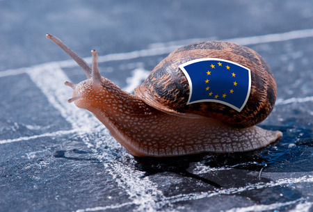 enlargement: finish line winning of a snail with the colors of Europe flag