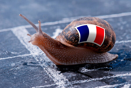 protectionism: finish line winning of a snail with the colors of France flag