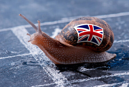 protectionism: finish line winning of a snail with the colors of England flag