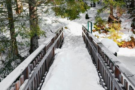 landsape: Small bridge with snow in vosges landsape