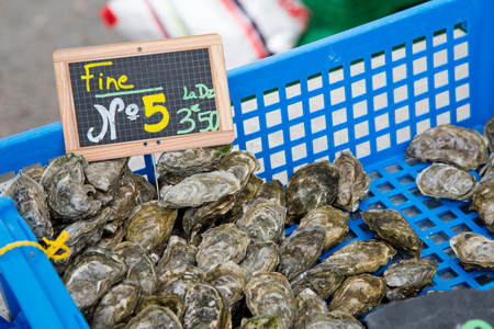 numero: Oyster of Marenes size number 5 (Fine numero 5 in French) in local market