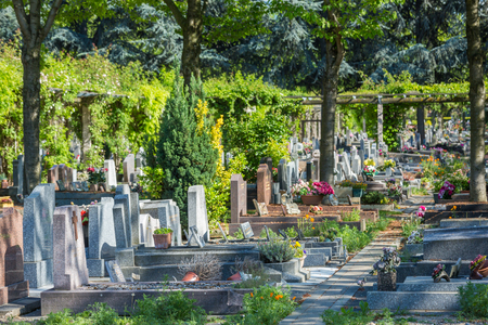 Flowers on a headstones in a cemetery with hundreds of tombstones in the background