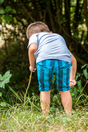 bordering: young boy exploring nature bordering forest with a wooden stick in hands