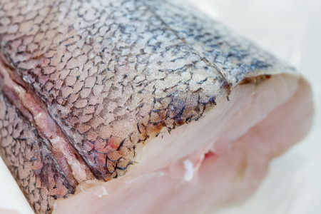 fish tail: fresh pieces of hake on showcase of seafood market
