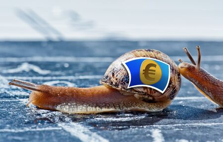 snail with the colors of euro currency flag encouraged by another