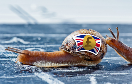 snail with the colors of pound sterling currency flag encouraged by another Stock Photo