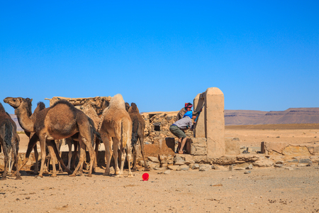 Ait Saoun, Morocco - February 23, 2016: Unidentified men with camels at well taking water in Ait Saoun desert in Morocco Editorial