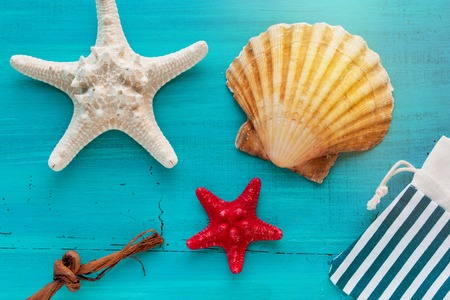 Summer board of sea shells scallop and star fish on blue wooden background for holiday concept