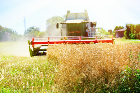 Combine harvester machine harvesting ripe wheat crop Stock Photo