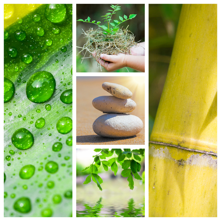 Spa green theme photo collage composed of different images