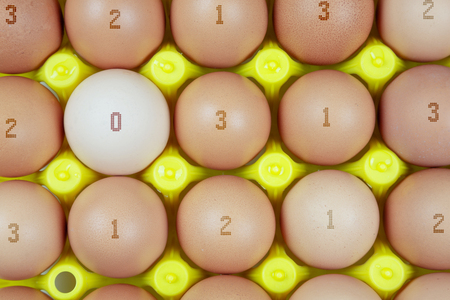 plate of chicken eggs marked according to their breeding method. Concept of qualitative marking of eggs with Package Container. Banco de Imagens