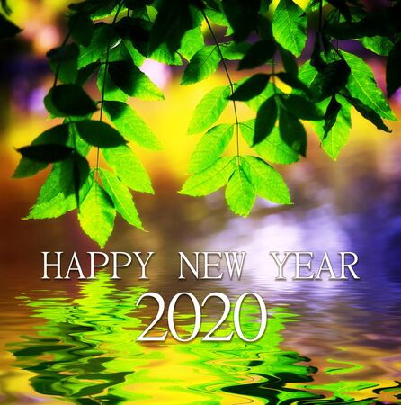 New year 2020 greeting card depicting a branch and its reflection on the water