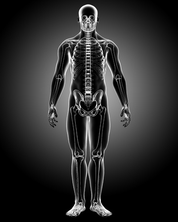 3d rendered medical x-ray illustration of male body X-ray anatomy illustration