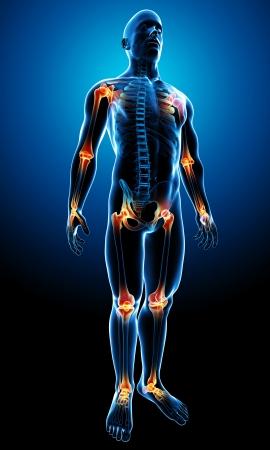 logo medicina: 3d rindi� la ilustraci�n de un cuerpo masculino de transparencia con las juntas resaltadas