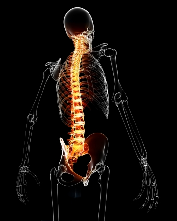 3d rendered medical x-ray illustration of Spinal cord with pain anatomy illustration