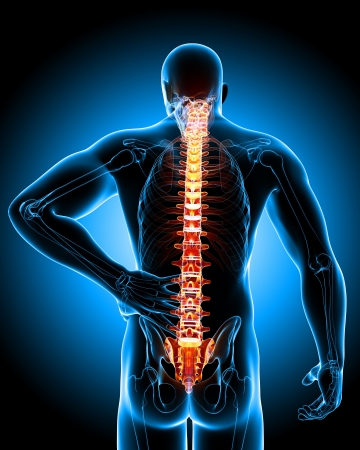 Back pain anatomy in blue photo