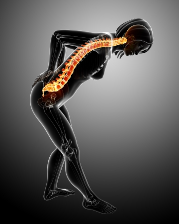 Spine pain in gray background photo