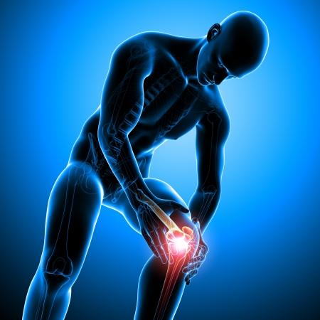 dolor rodilla: Anatom�a del dolor de rodilla masculina
