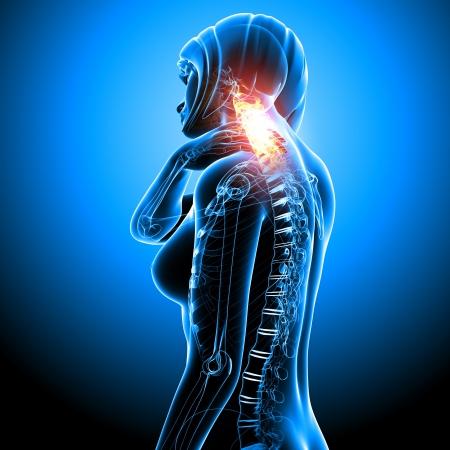Anatomy of female nake pain blue Stock Photo - 13756376
