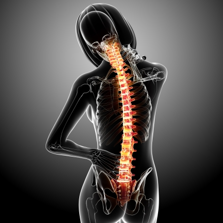 female spine pain in gray Stock Photo - 13757815