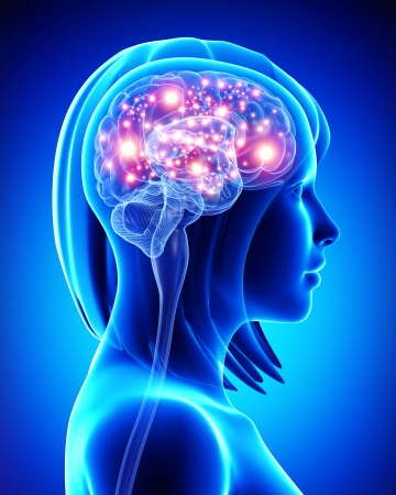 thought: female active brain Stock Photo