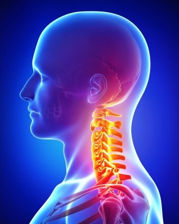 Anatomy of Pain in neck of male