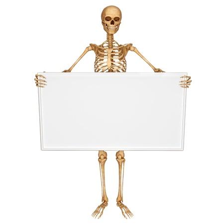 squelette: squelette montrant des signes Banque d'images