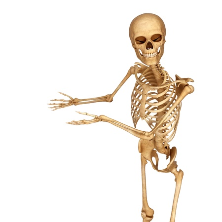 esqueleto humano: esqueleto que señala hacia espacio en blanco