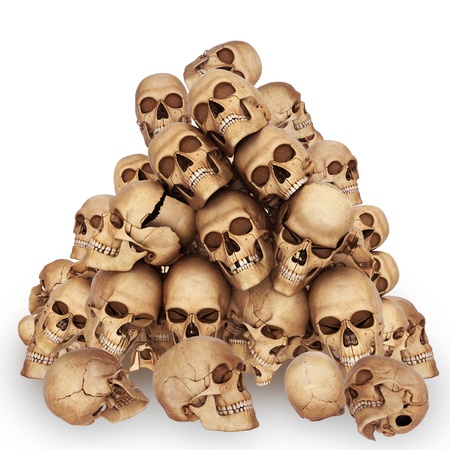 lots of skulls are isolated on white photo