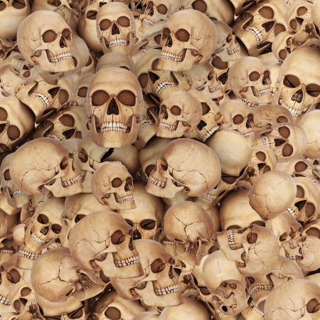 lots of skulls photo