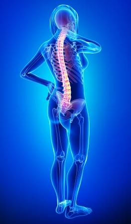 青の女性の背中の痛み 写真素材