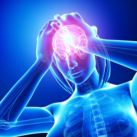 ventricle: anatomy of brain pain in blue Stock Photo