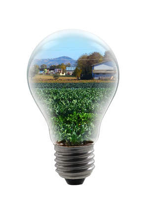 bulb lamp with Stock Photo