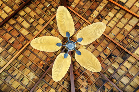 ceiling fan: wooden ceiling fan