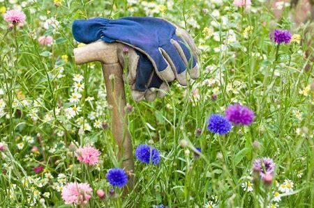 blau: Auf Spatengriff abgelegte Arbeitshandschuhe in einer Gartenwiese Stock Photo