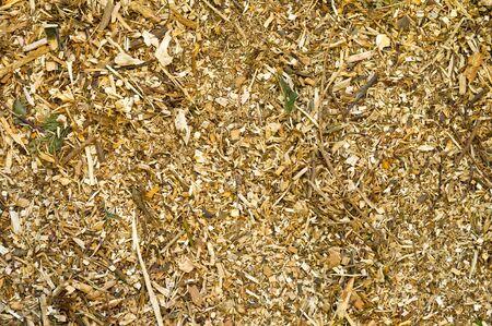 bark mulch: bark mulch