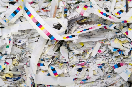 shreds: Paper strips