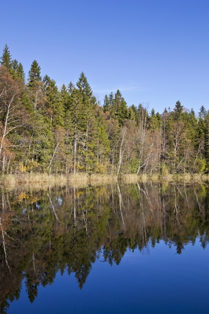 Forest lake in autumn color Stock Photo - 10002606